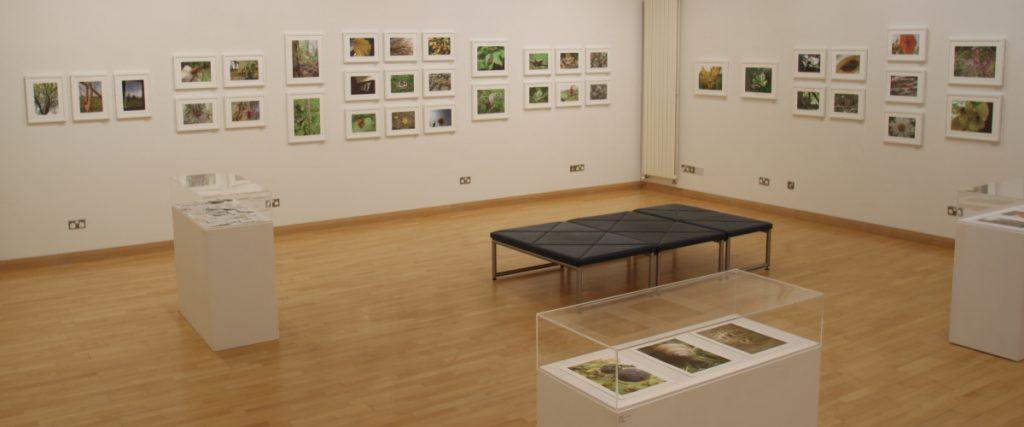 wwg-gallery1
