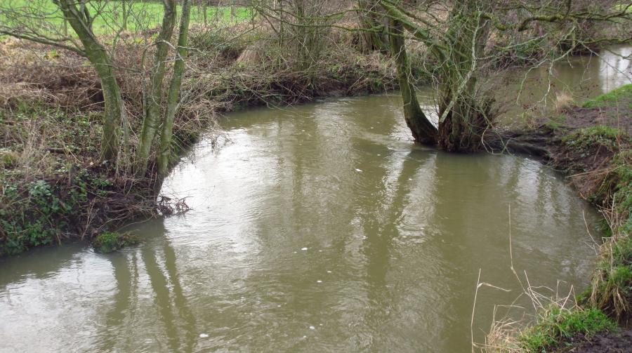 River Wk5